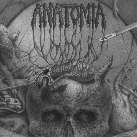 anatomia – cranial obsession