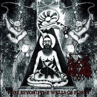 black mass pervertor – life beyond the wall of flesh [ep]
