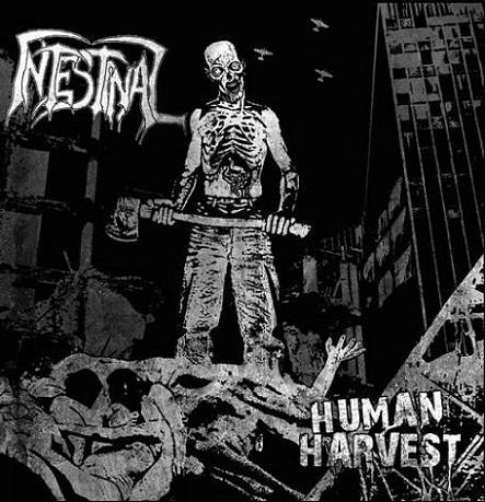 intestinal – human harvest