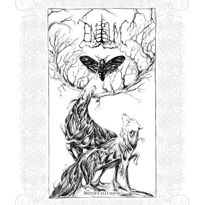 enisum – moth's illusion