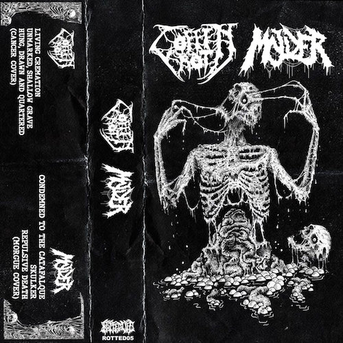 coffin rot / molder – coffin rot / molder [split]