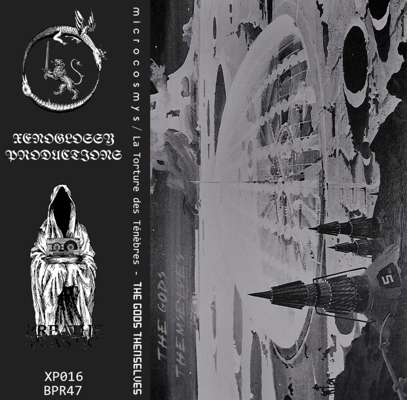microcosmys / la torture des ténèbres – the gods themselves [split]