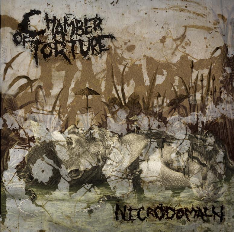 chamber of torture – necrodomain