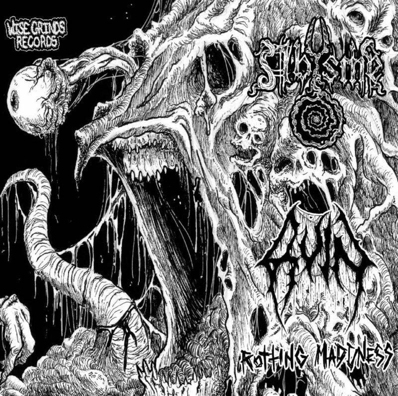 ruin [usa] / abysme – rotting madness [split]