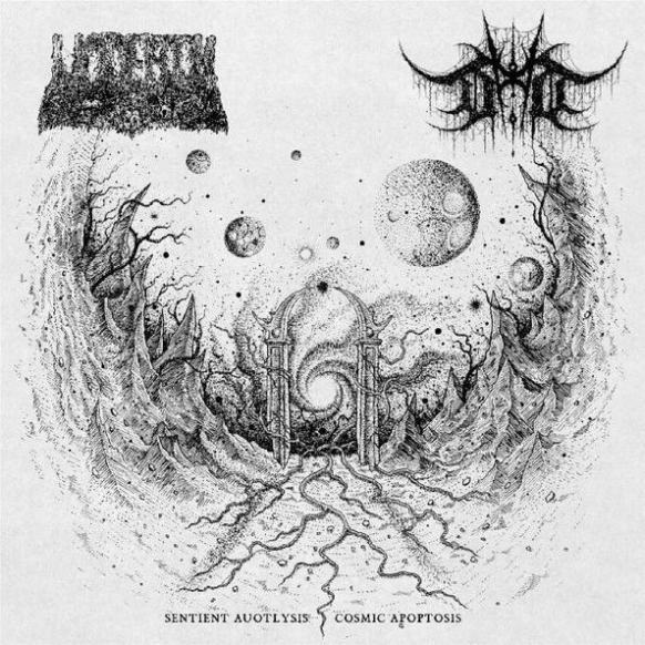 devoid of thought / undeath – sentient autolysis / cosmic apoptosis [split]
