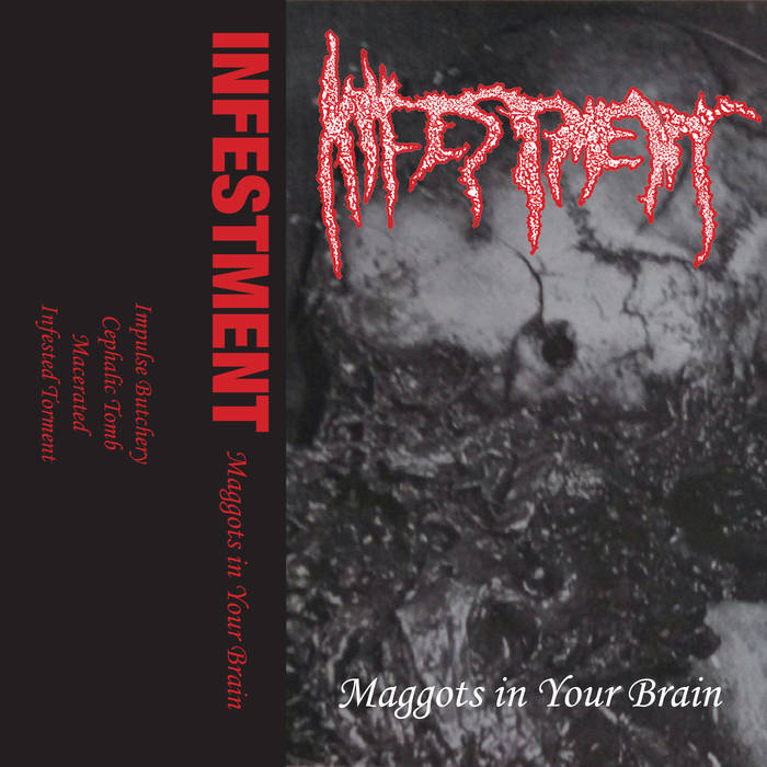 infestment – maggots in your brain [demo]