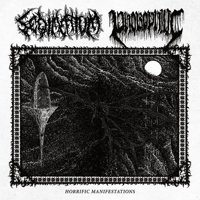 sedimentum / phobophilic – horrific manifestations [split]