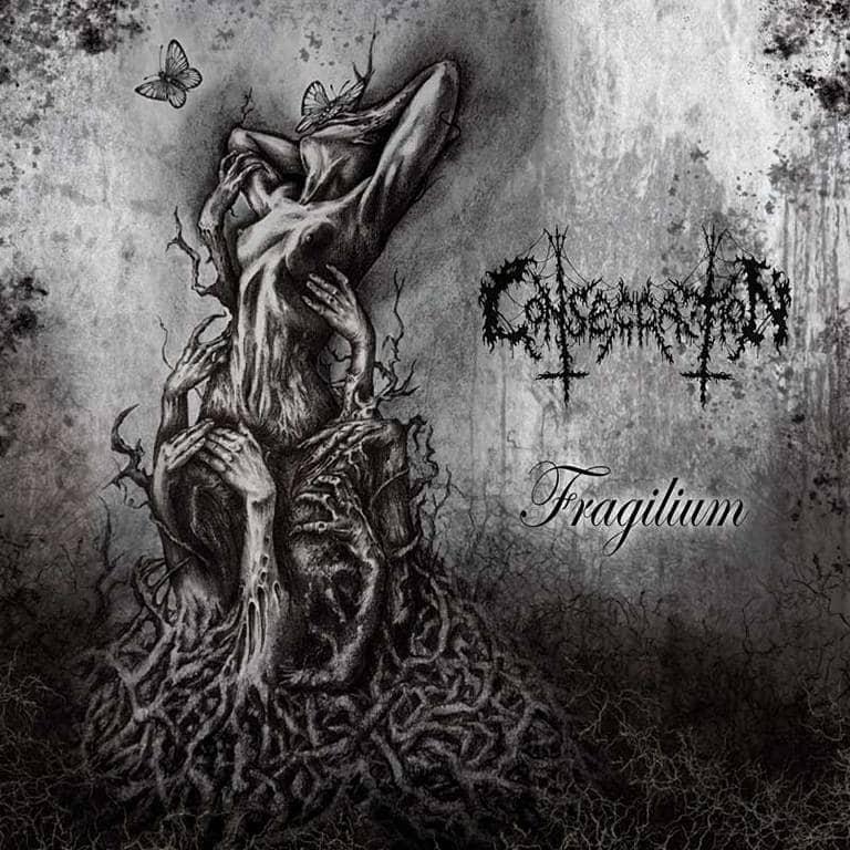 consecration – fragilium