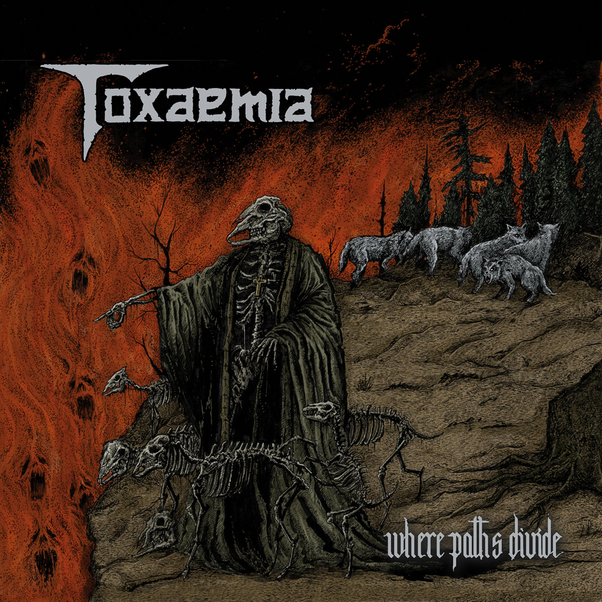toxaemia – where paths divide