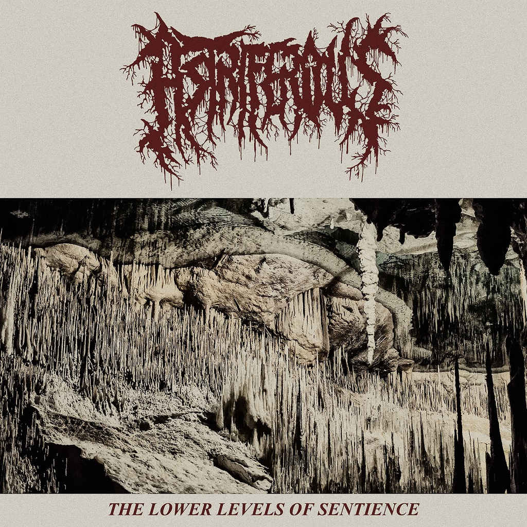 astriferous – the lower levels of sentience [ep]
