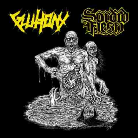 gluttony / sordid flesh – gluttony / sordid flesh [split]
