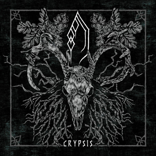 forest of grey – crypsis