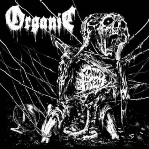 organic [ita] – carved in flesh