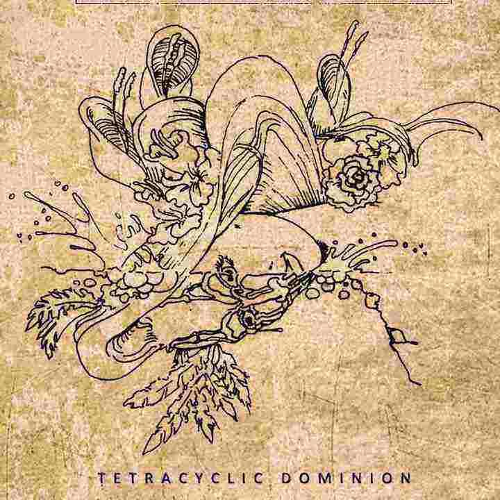 godless enthropia – tetracyclic dominion