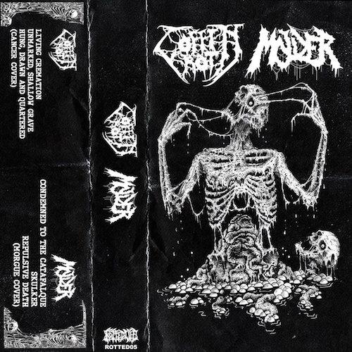 coffin rot / molder – coffin rot / molder [split]