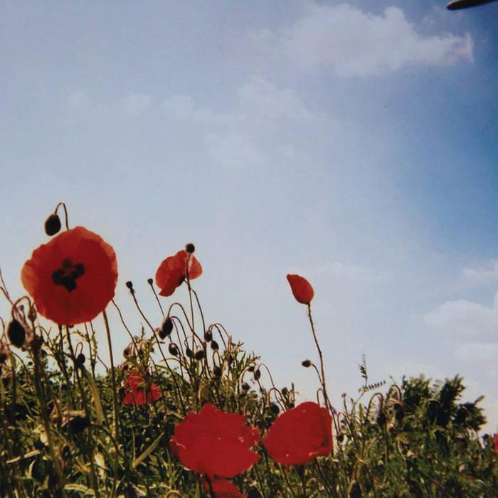 fluisteraars – bloem
