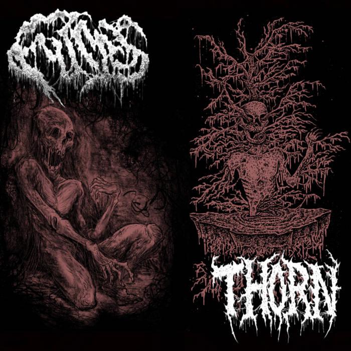 fumes / thorn – fumes / thorn [split]